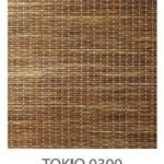 Tokio-0300